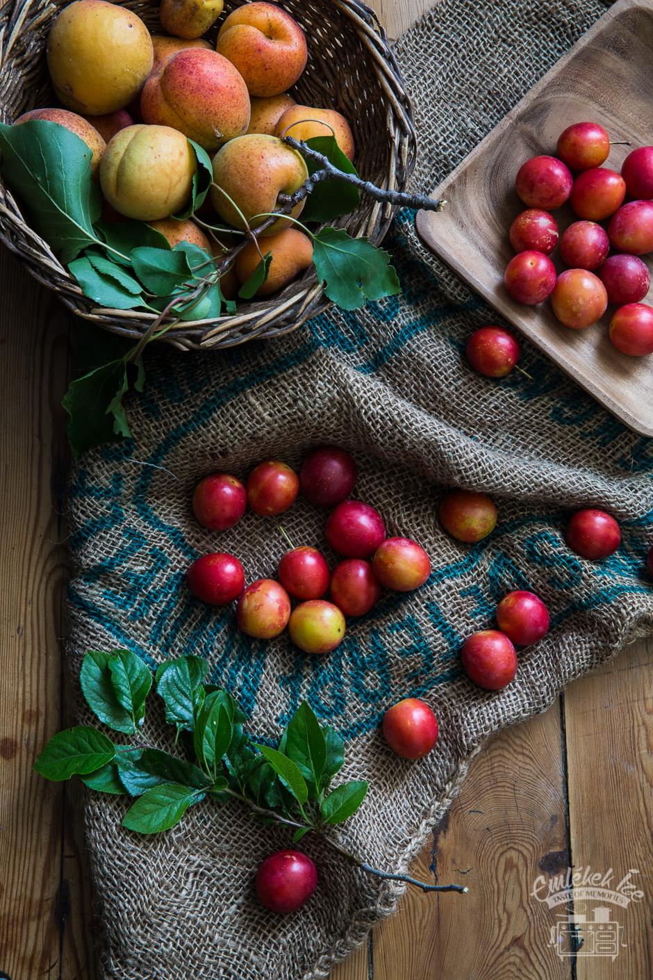 cseresznyeszilvás és barackos gombóc az Emlékek Íze konyhájából