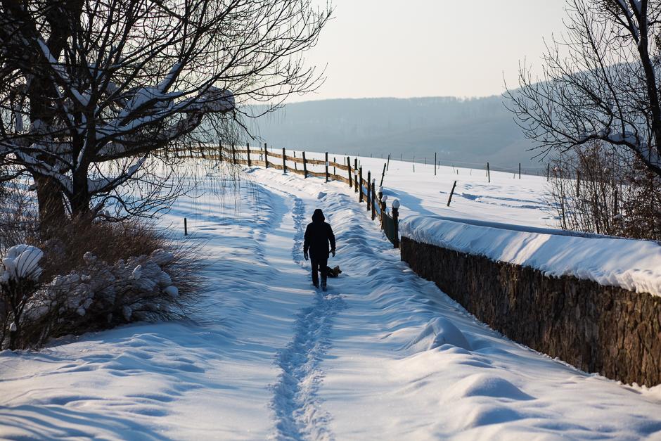 téli csodavilág a Bakonyban www.emlekekize.hu