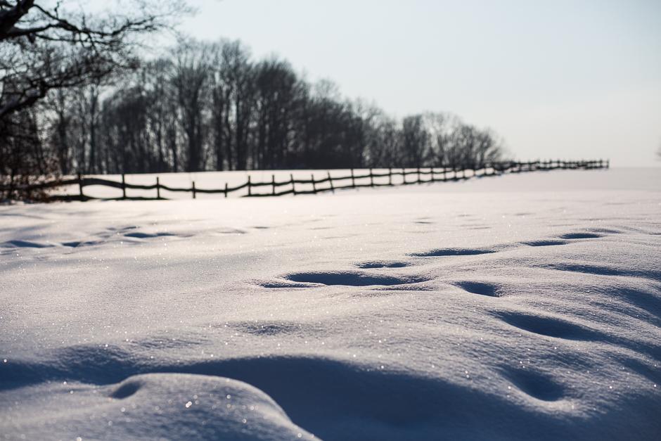 téli képek a Bakonyból www.emlekekize.hu