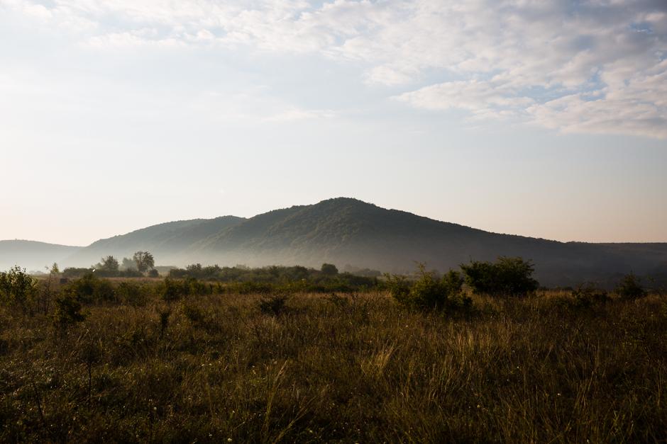a késő nyár esszenciája, levesízesítő az Emlékek Íze konyhájából www.emlekekize.hu